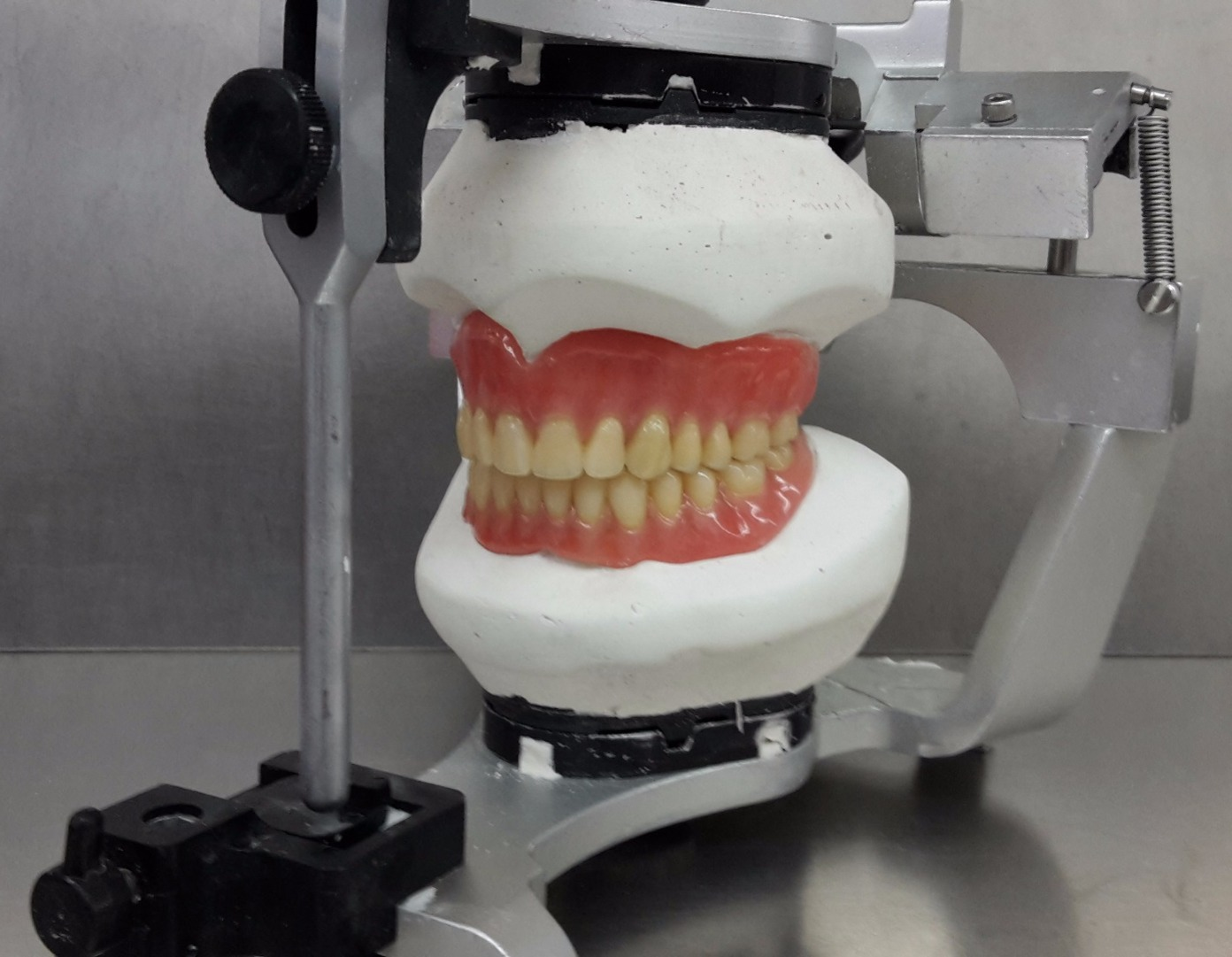 articulated dentures